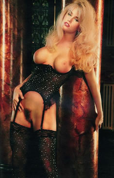 playboy celebrity jenny playboy playmate in black stocking and corsette
